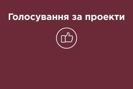 12 листопада 2019 року розпочалося голосування за громадський проект